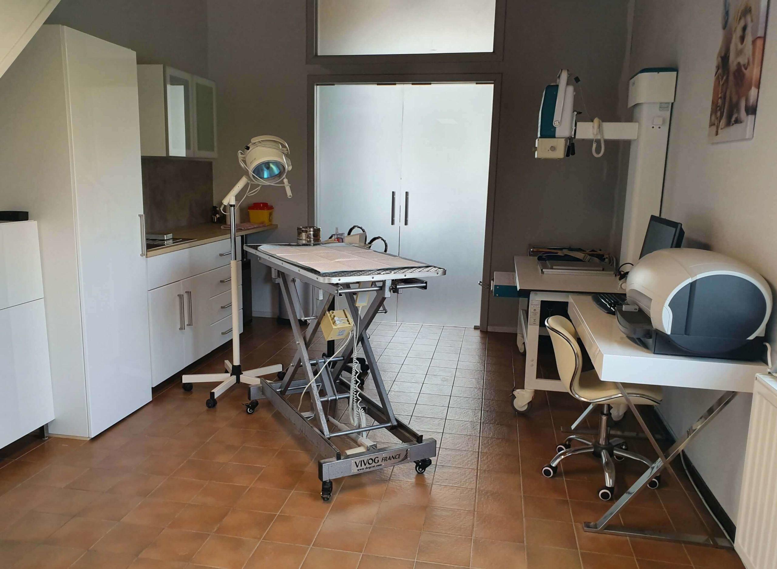 echographie01-veterinaire-ransart-charleroi (1)