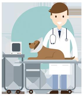 icon12-veterinaire-ransart-charleroi