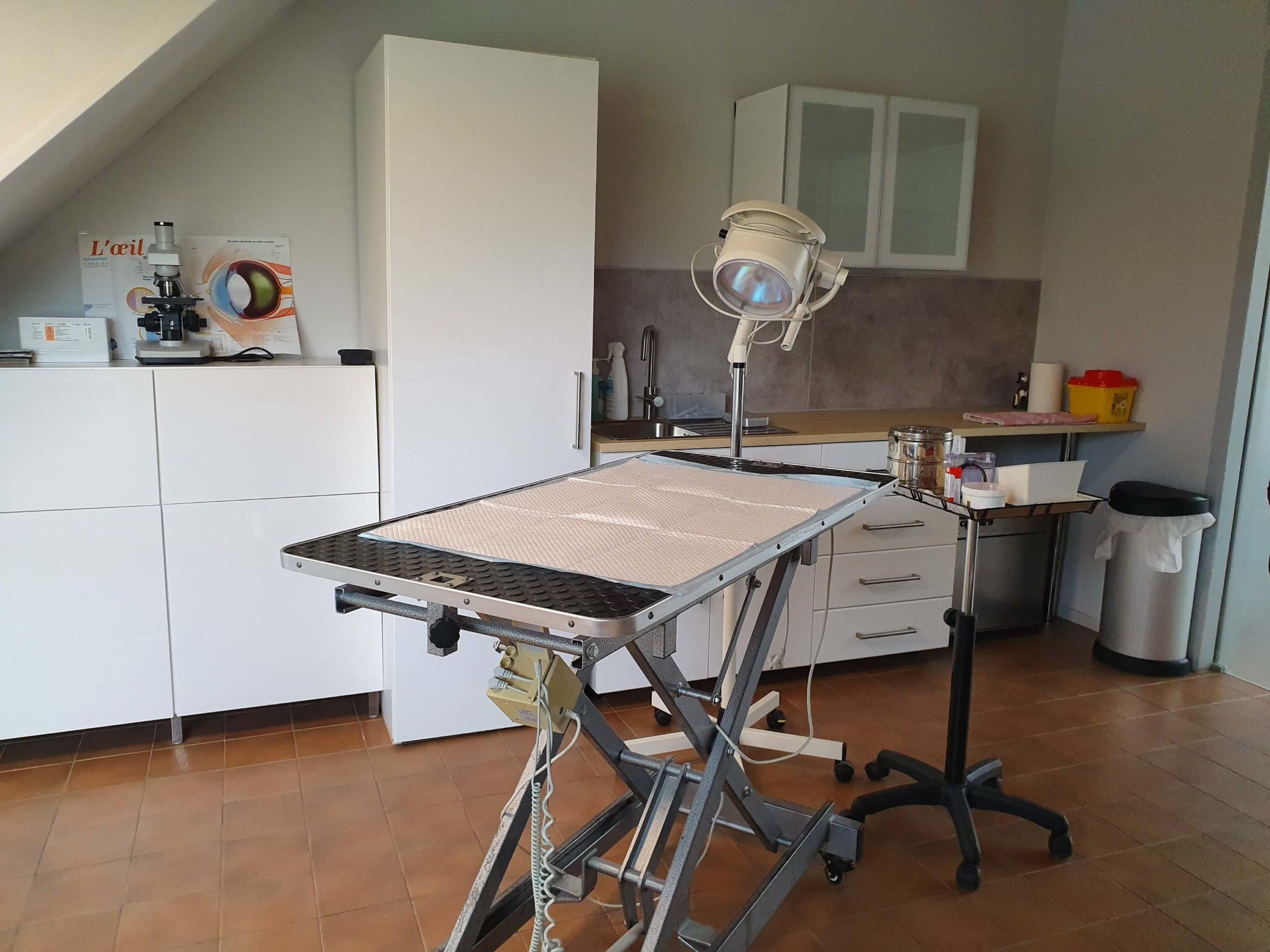 obstetrique-veterinaire-ransart-charleroi