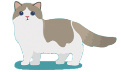 picto-veterinaire-ransart-charleroi
