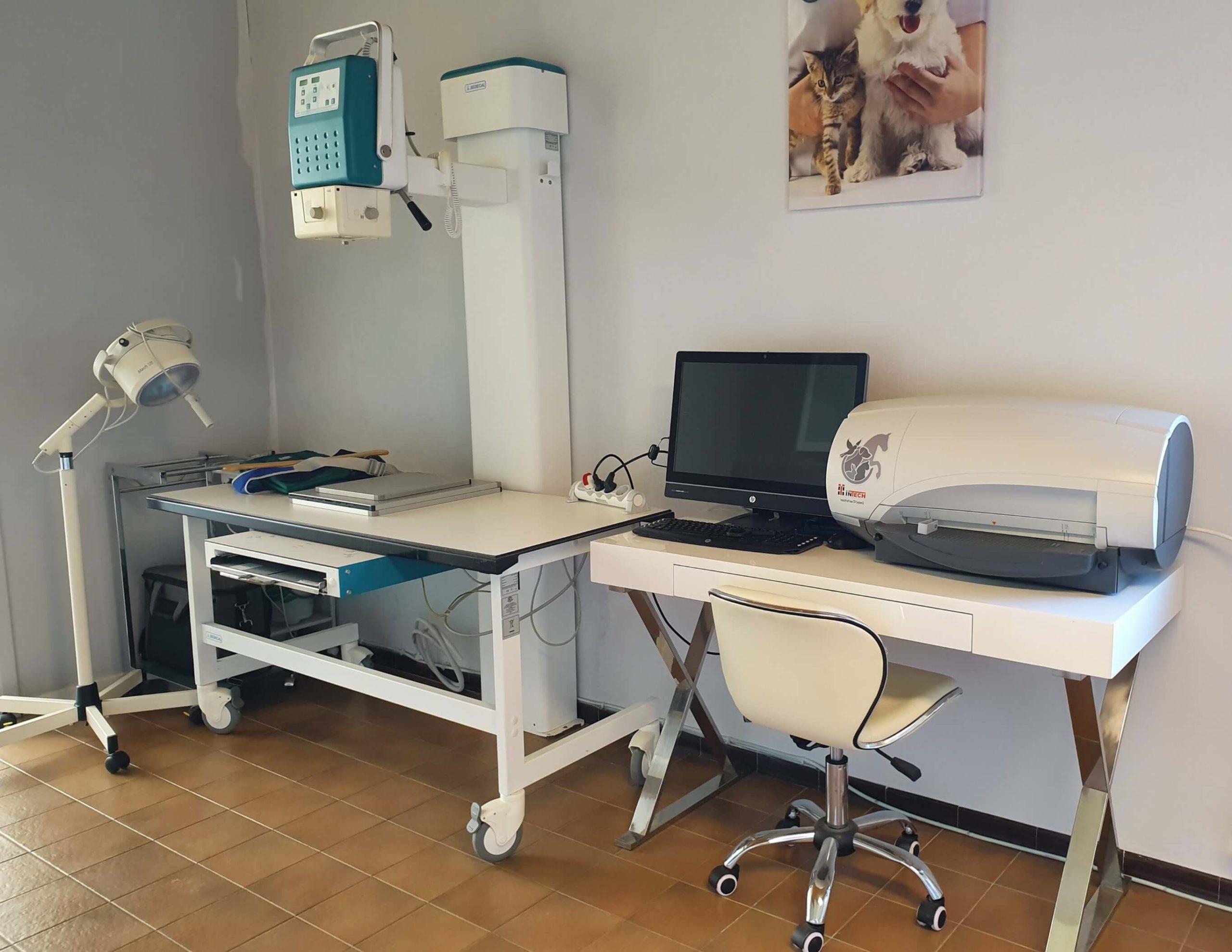 radiographie-veterinaire-ransart-charleroi