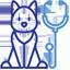 radiographies-veterinaire-ransart-charleroi