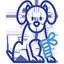 reproduction-veterinaire-ransart-charleroi